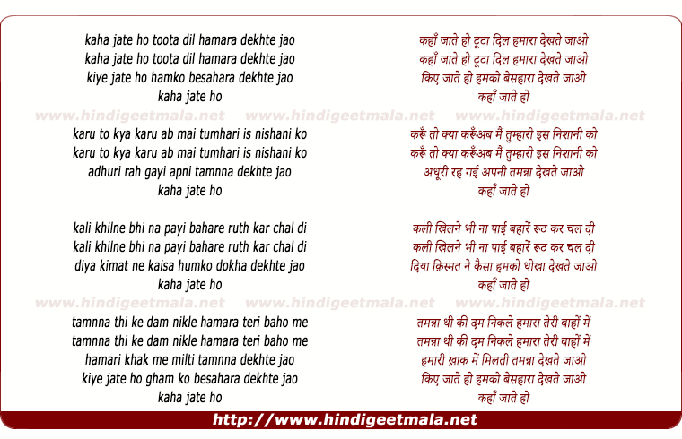 lyrics of song Kaha Jate Ho Toota Dil Hamara Dekhte Jao