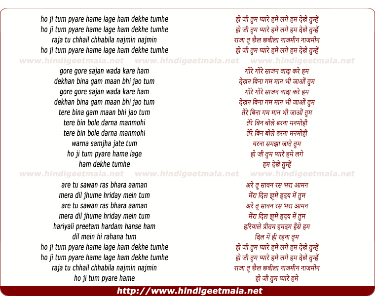 lyrics of song Ho Ji Tum Pyare Hume