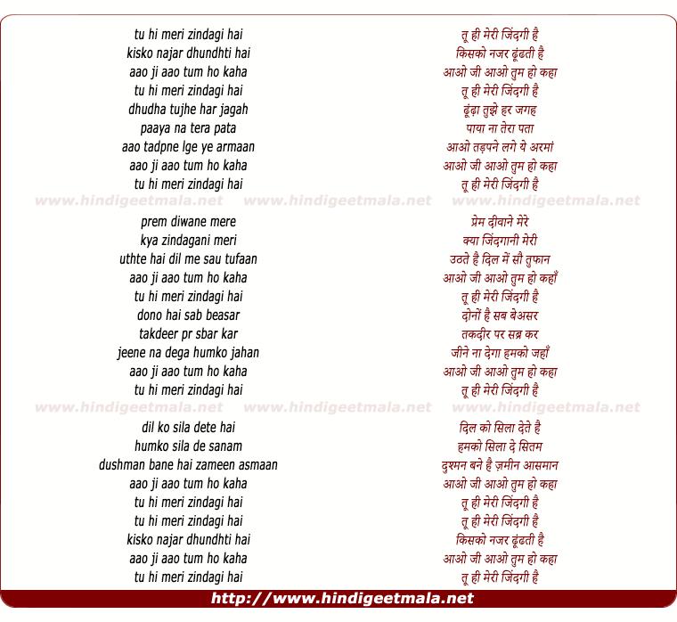 lyrics of song Tu Hi Meri Zindagi Hai