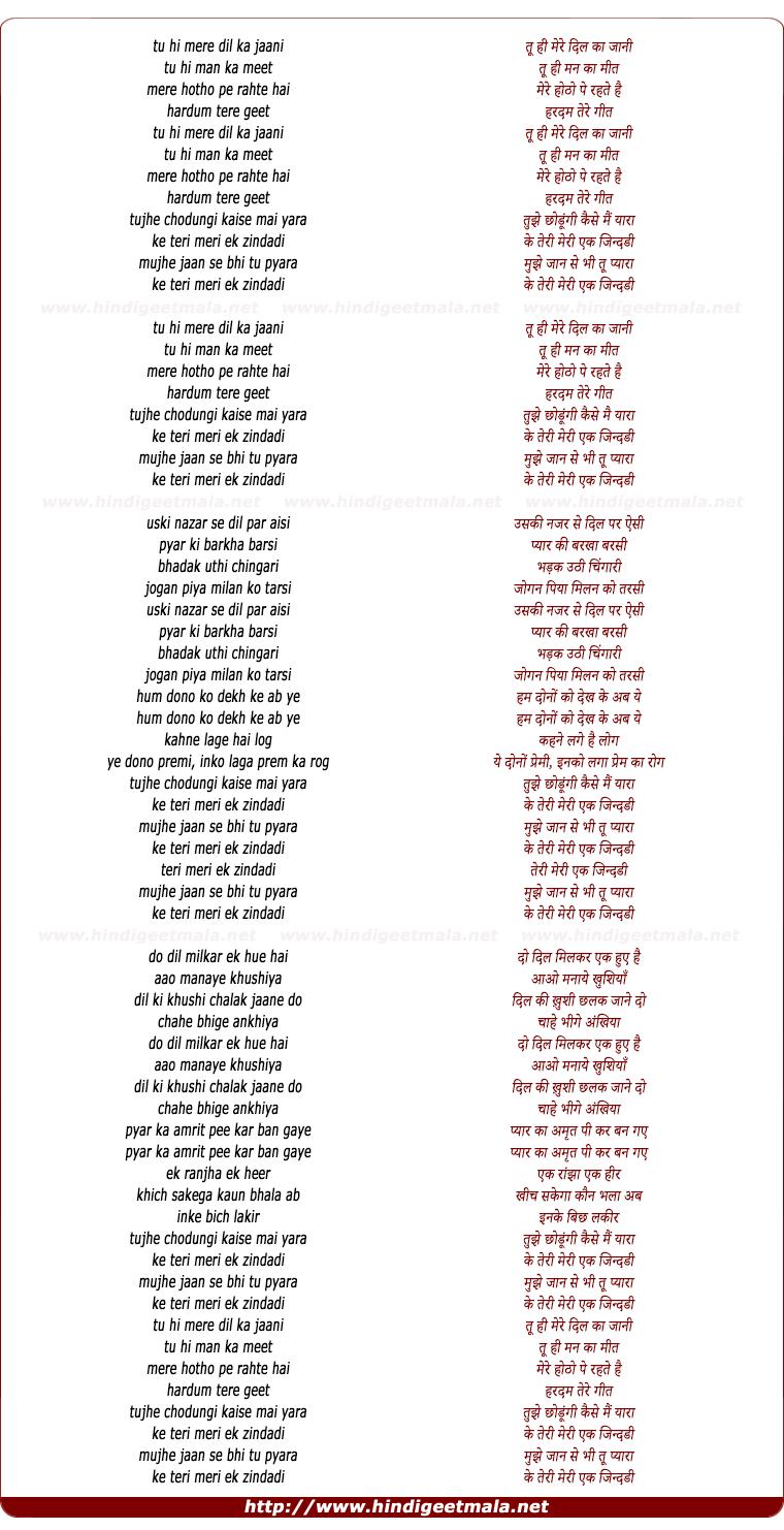 lyrics of song Tu Hi Mere Dil Ka Jani