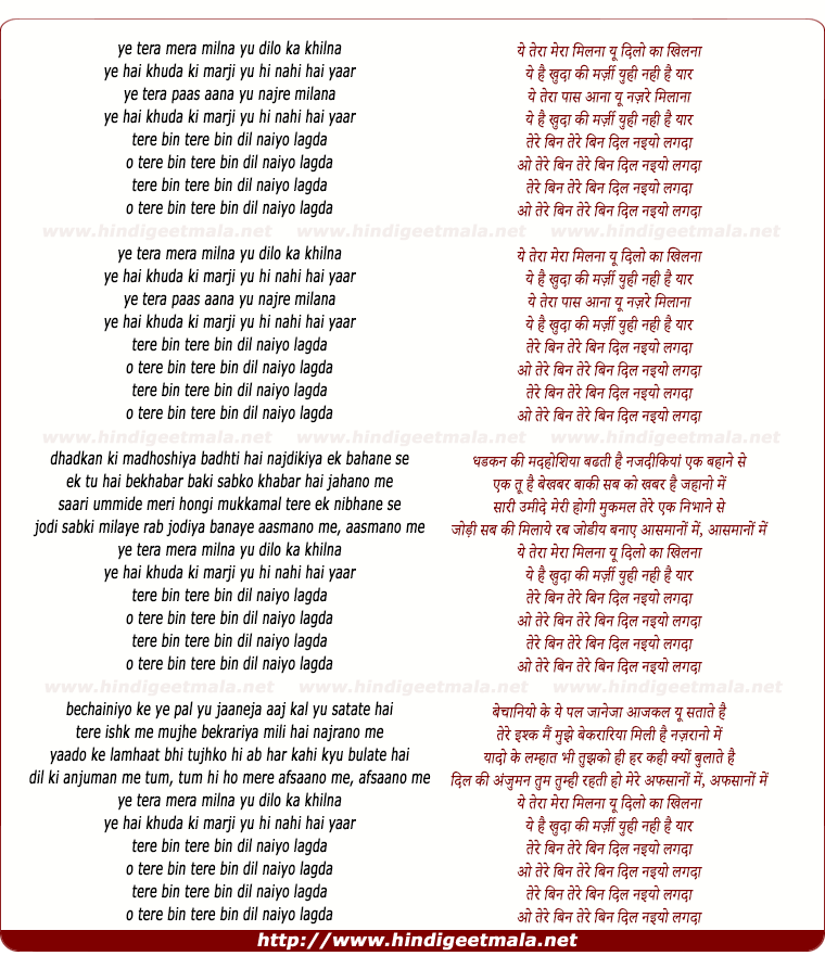 lyrics of song Tera Mera Milna (Remix)