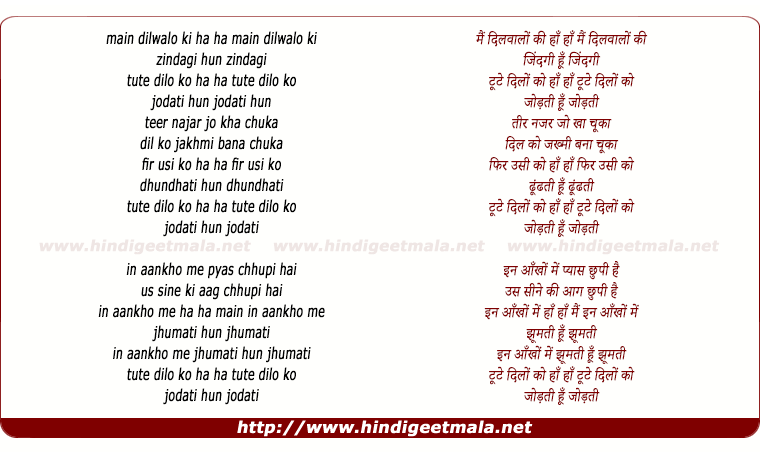 lyrics of song Mai Dil Wale Ki Zindagi Hu