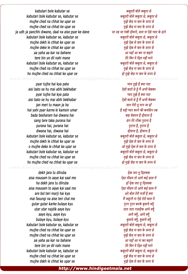lyrics of song Kabutari Bole Kabutar Se