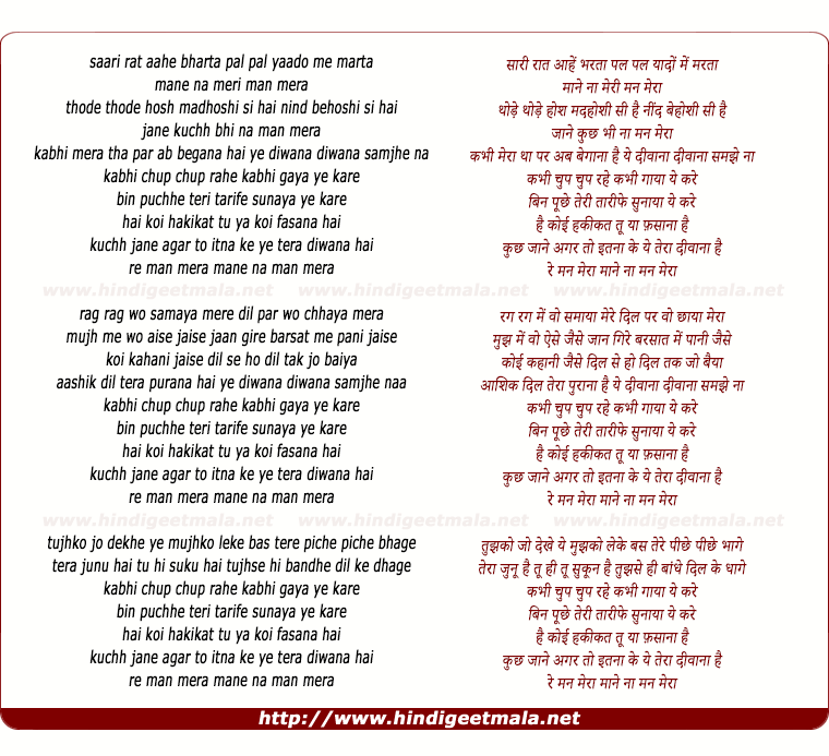 lyrics of song Mann Mera (Remix)