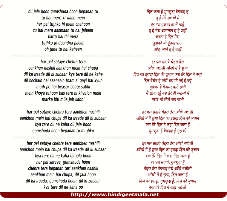 lyrics of song Chehra, Dil Jala Hu Gumshuda Hu Bepanah Tu