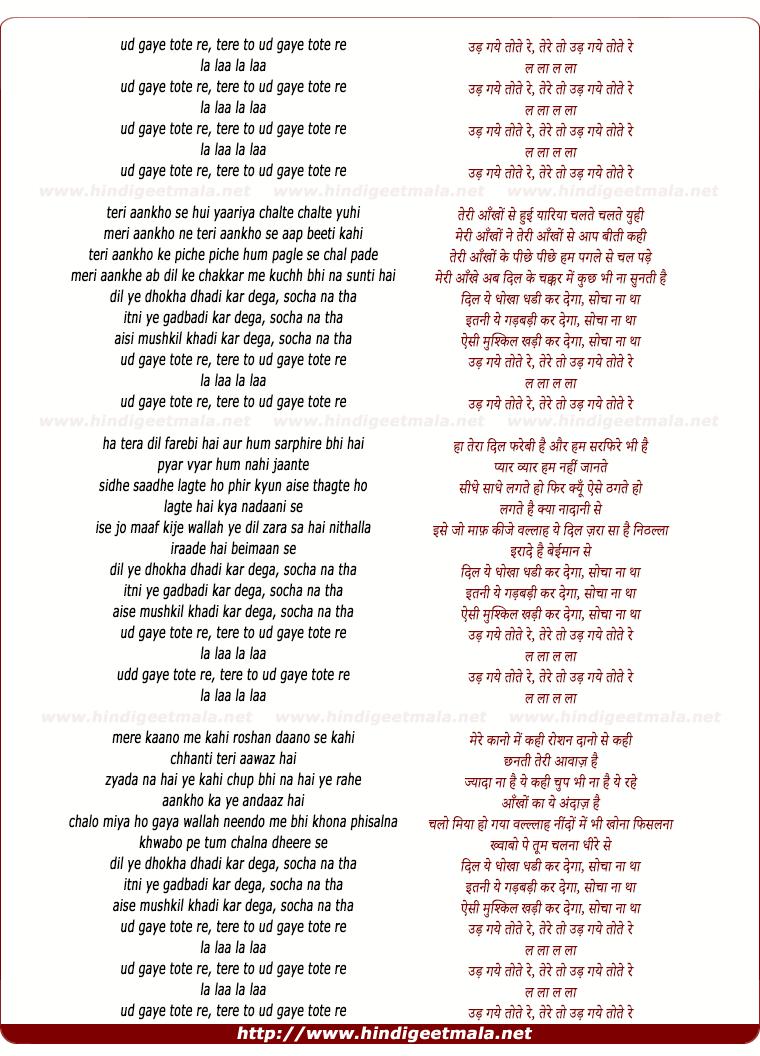 lyrics of song Dhokha Dhadi