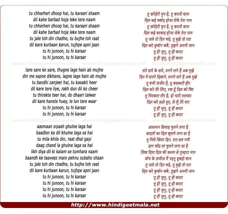 lyrics of song Tu Hi Junoon, Tu Hi Karaar