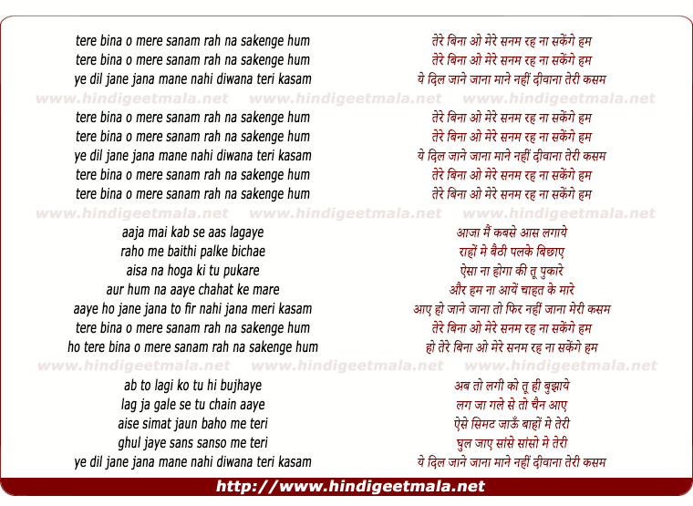 lyrics of song Tere Bina O Mere Sanam