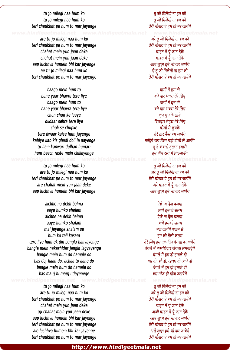 lyrics of song Tu Jo Milegi Naa Hum Ko