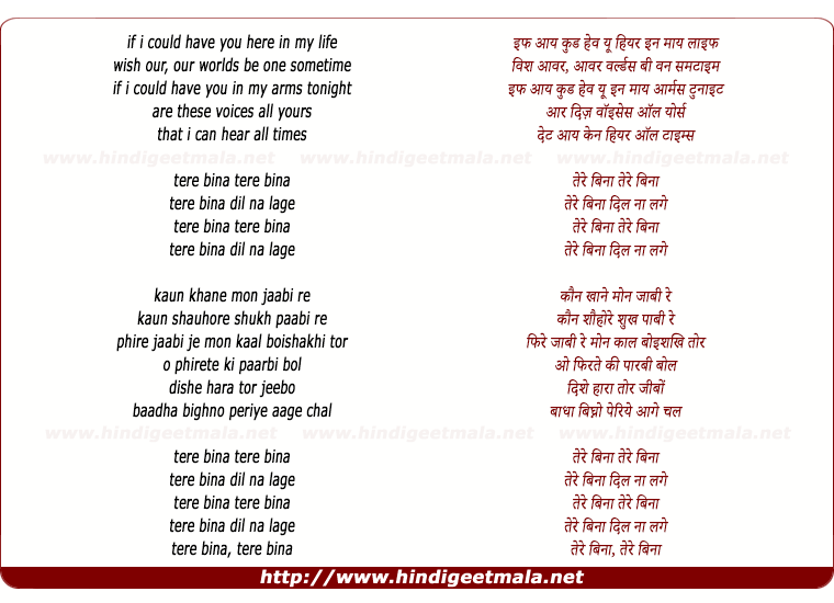 lyrics of song Tere Bina Dil Naa Lage
