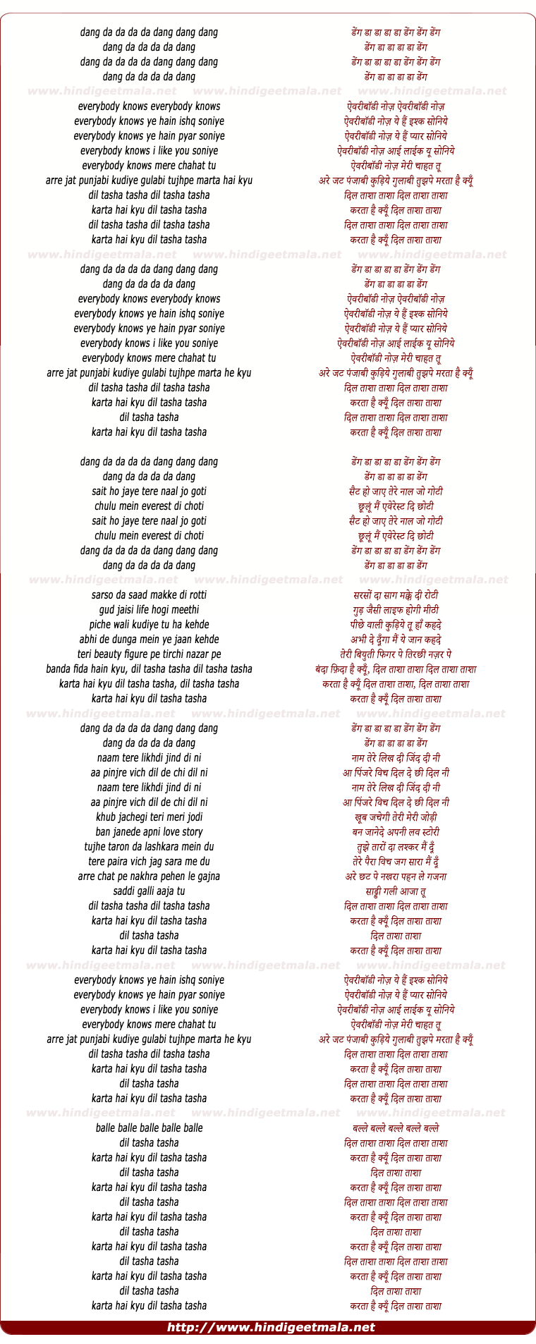 lyrics of song Dil Taasha Taasha - I