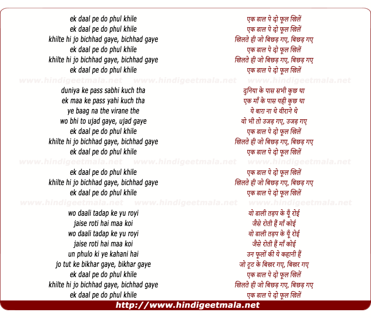 lyrics of song Ek Daal Peh Do Phool Khile