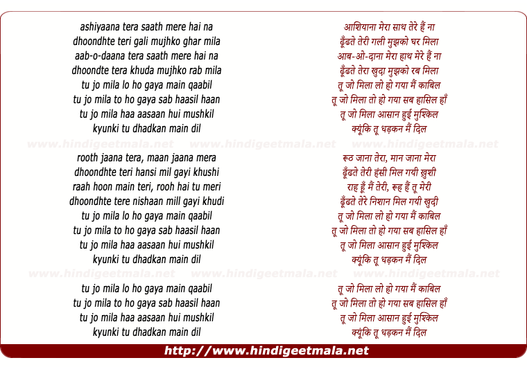 lyrics of song Tu Jo Mila (Mtv)