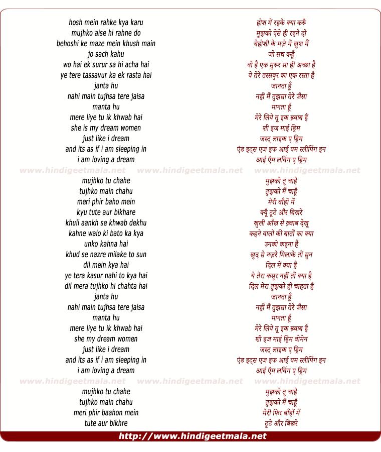 lyrics of song Loving A Dream