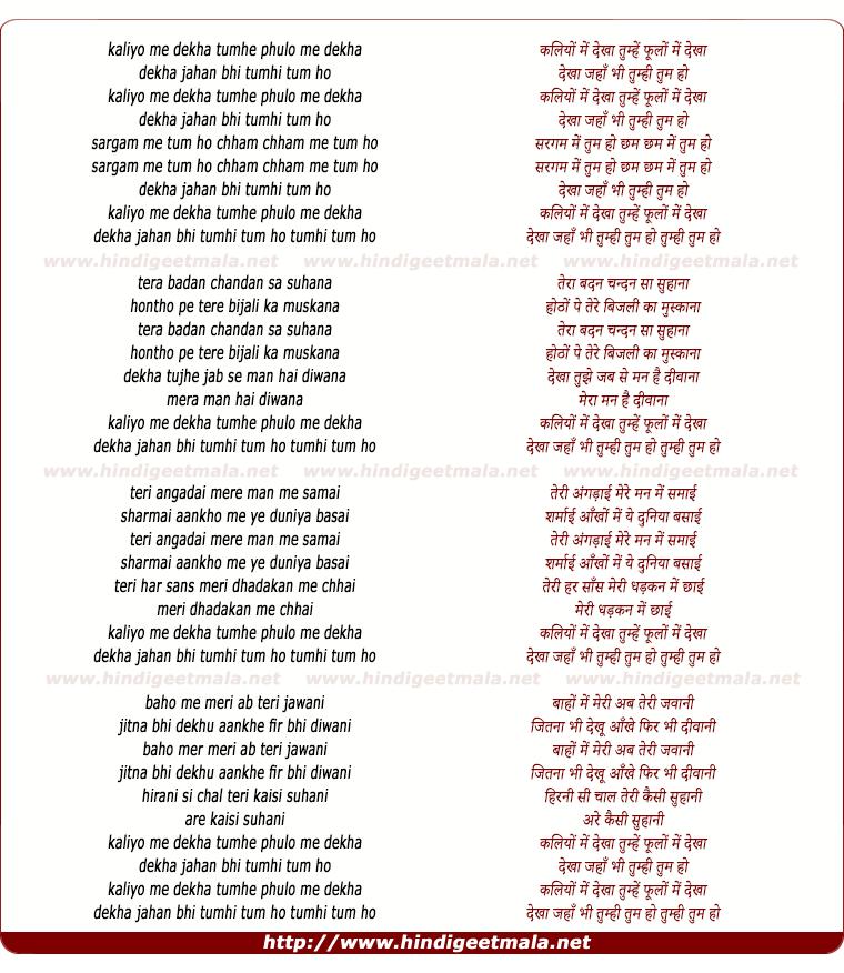 lyrics of song Kaliyo Me Dekha Tumhe, Phulo Me Dekha